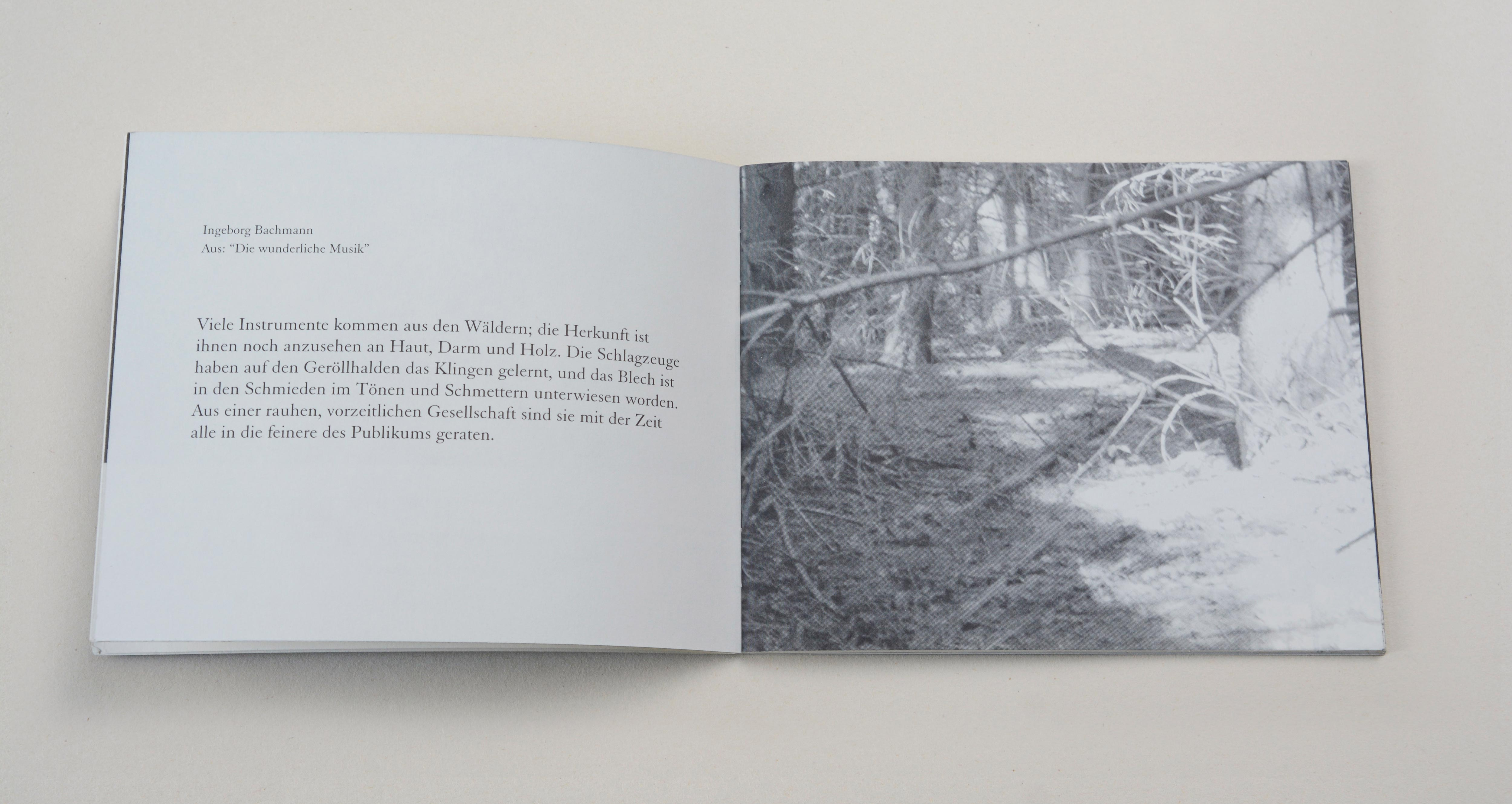 Double page. Left: Block of text. Right: Full-page b/w image. Inside the forest.